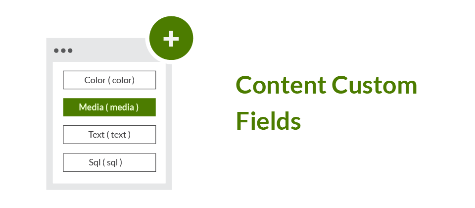 Content custom fields